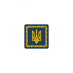 Website e-petition to the official Internet representation of the President of Ukraine